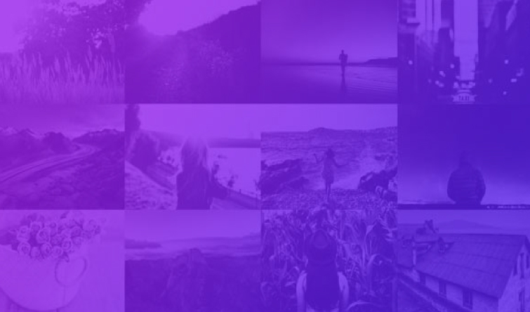 5 Impressive Divi Gallery Layouts and How to Create Them – Full Series